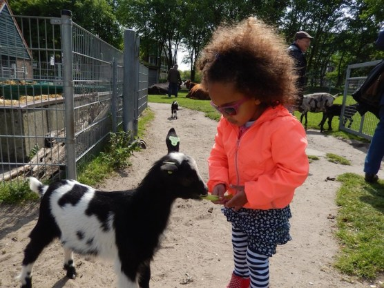 attivita-per-bambini-a-den_haag