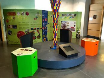 museo storia naturale lussemburgo