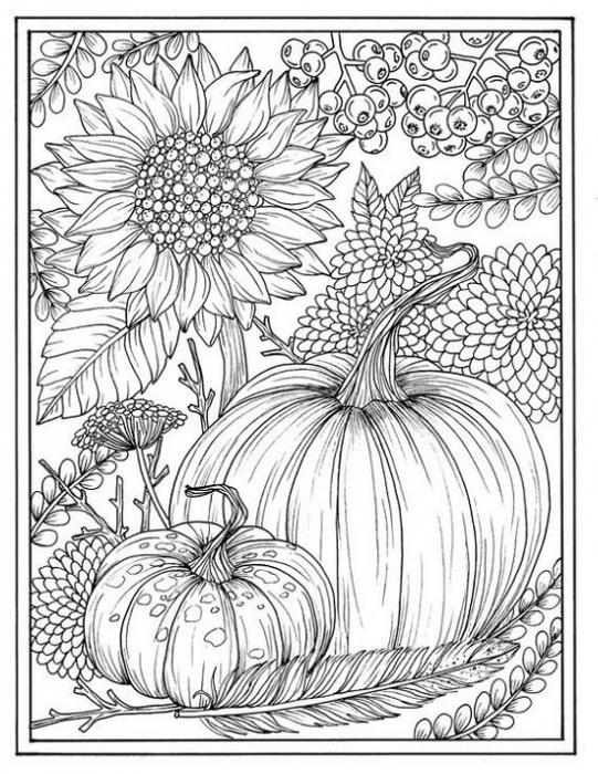 Zucca di Halloween: disegno da colorare