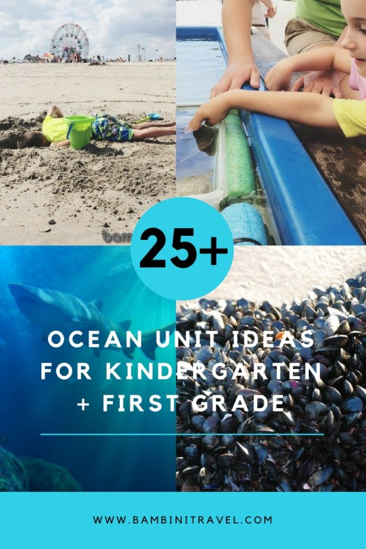 25+ Ocean Unit Ideas for Kindergarten and First Graders
