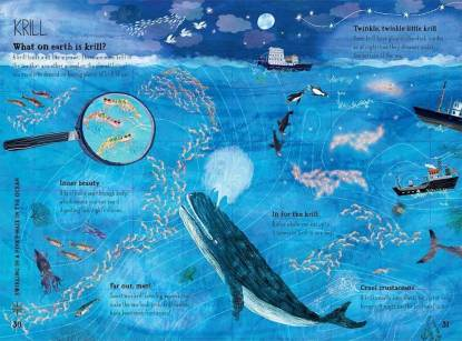 big book of blue krill and whales