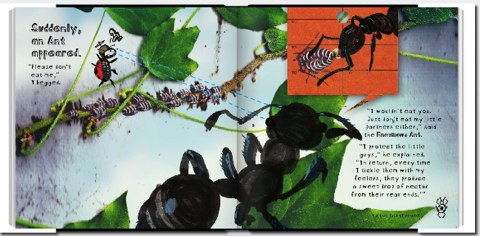 Ladybug and the Awesome Bug Book Adventure | Book Preview-1.jpg