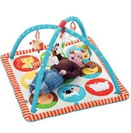 skip hop baby gym | VUPbaby | BPA free baby products-1.jpg