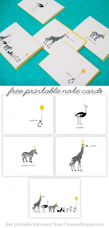 Party animal note cards by Caravan Shoppe