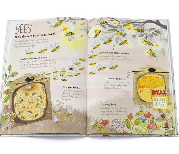 bees inside big book of bugs