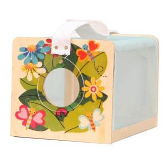 insect box butterfly design