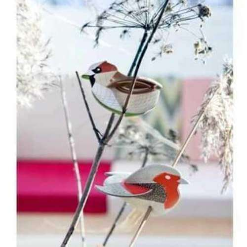 pop out studio roof card sparrow and robin