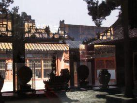 Im Palast der Frauen