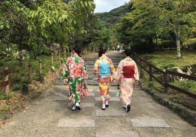 Japan Kimonos