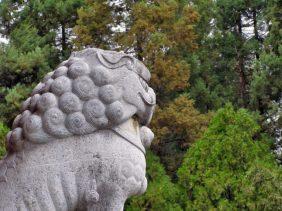 Lijiang in Yunnan: Steinlöwe