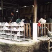 Wat Kow Tahm Speisesaal