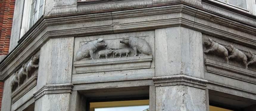 Klöpperhaus Schweine