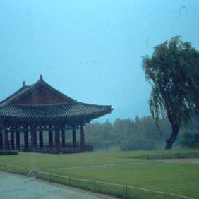 Südkorea im Regen