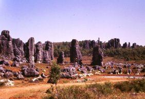 Blick über den Steinwald 1987