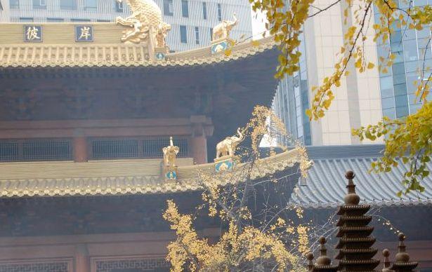 Elefanten am Jingan-Tempel Shanghai