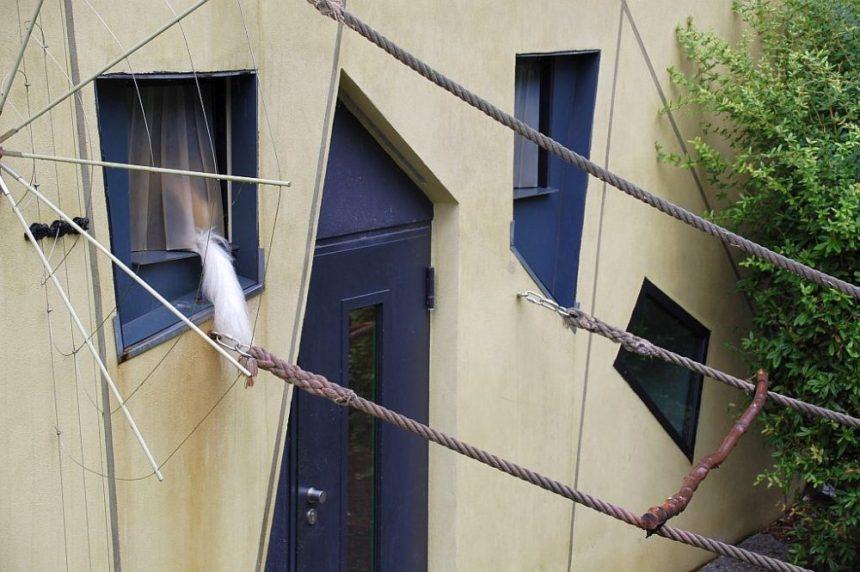 Zoo Dresden - Mantelaffen-Schwanz