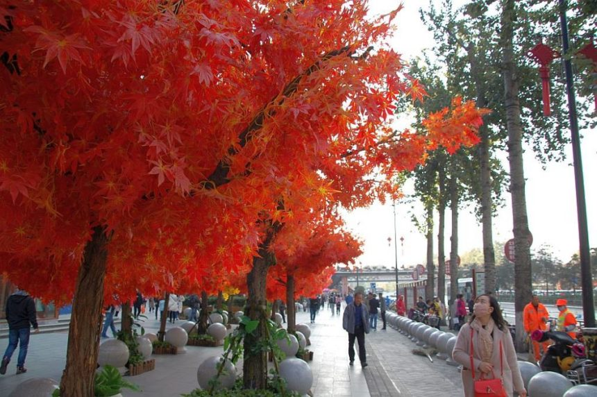 Unechte Bäume mit roten Plastikblättern