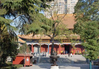 Daxingshan Tempel Xi'an Hof