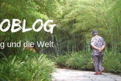 Reiseblog Bambooblog