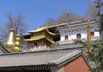 Xiantong Tempel Wutaishan