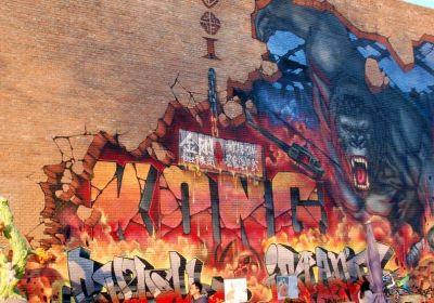 Art Zone 798 - Streetart
