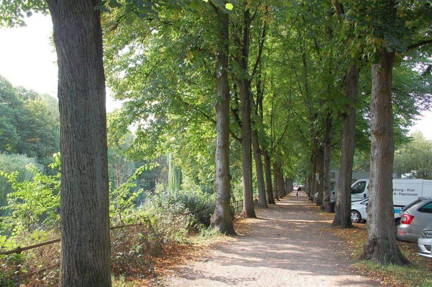 Uferstrasse