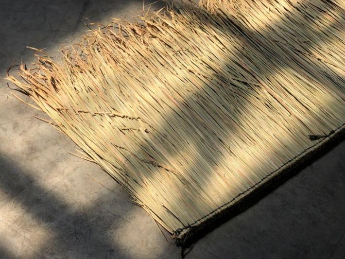 Palmdach vom Bambusexperten CONBAM