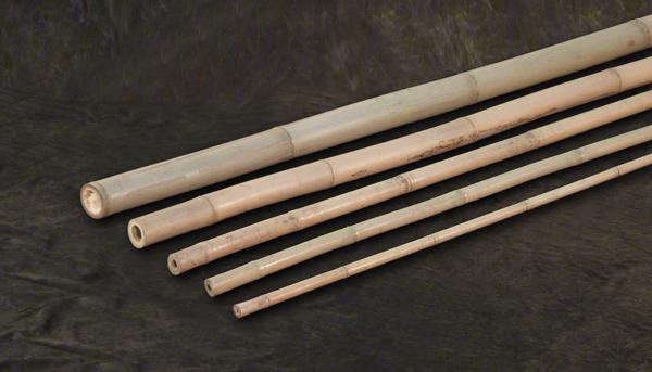 Bambusrohr-zum-Bau-von-Insektenhotels-als-Nisthilfe-im-Garten-vom-Bambushandel-CONBAM
