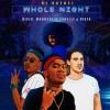 DJ Raybel – Whole Night ft. Moonchild Sanelly, Diplo & Vista