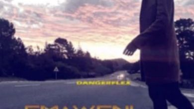 DangerFlex – Emaweni