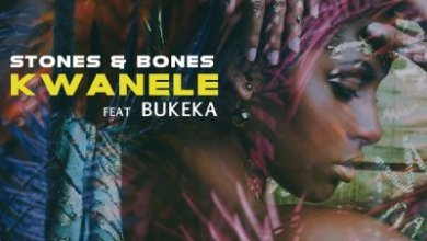 Stones & Bones, Bukeka – Kwanele (Remix)