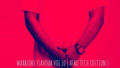 Afro Warrior – Warriors Flavour Vol. 10