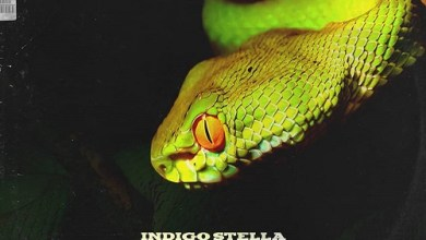 Indigo Stella – No Cap ft. Lnlyboy