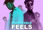 Thato Feels – Feels ft. Kyle Deutsch
