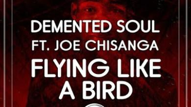Demented Soul – Flying Like A Bird ft. Joseph Chisanga