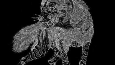 Hyenah – Not Enough ft. Lazarusman (Original Mix)