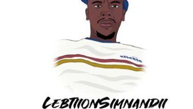 Lebtion Simnandi & Dr.Sauce – Piano Groove Vol.8 (Strickly DJ King Tara & Mdu aka Trp)