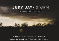 Judy Jay – Storm (China Charmeleon The Animal Mix)