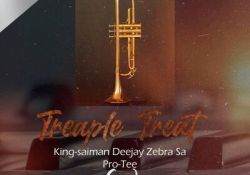 King Saiman, Deejay Zebra SA & Pro-Tee – Trumpet String