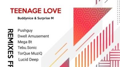 Buddynice – Teenage Love (Tebu.Sonic's Sonitech Mix) ft. Surprise M