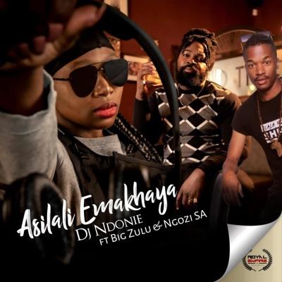 Dj Ndoni – Asilali Emakhaya ft. Big Zulu & Ngozi SA