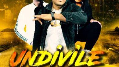 Dj Biblos – Undivile ft. Pro-Tee & Anelisa N