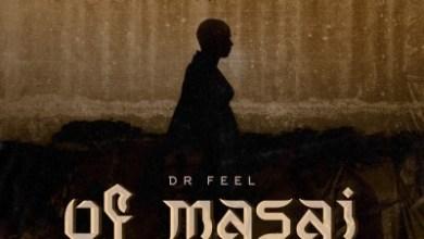 dr-feel-–-of-masai-original-mix