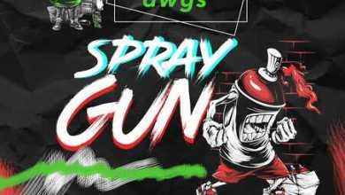 IRohn Dwgs – Spray Gun