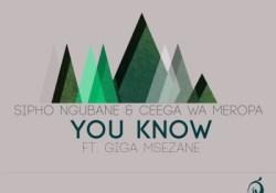 Sipho Ngubane & Ceega Wa Meropa – You Know EP