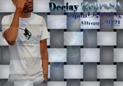 Deejay Zebra SA – Kubii