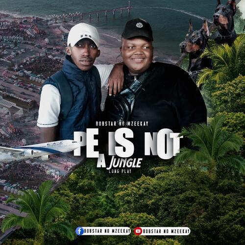 Bobstar no Mzeekay – Streets Of Port Elizabeth ft. LeendroCamp