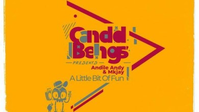 Andile Andy & MKJay SA A Little Bit Of Fun Mp3 Download