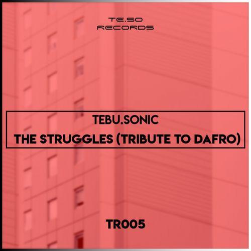 Tebu Sonic The Struggles (Tribute To Dafro) Mp3 Download