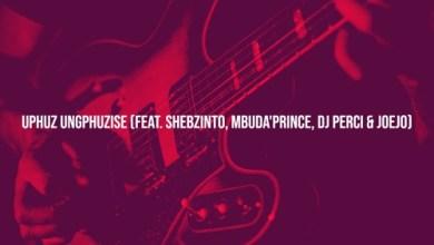 Mr Dee ft. DJ Perci, JoeJo, Shebzinto & Mbuda'Prince – Uphuz Ungphuzise Mp3 Download